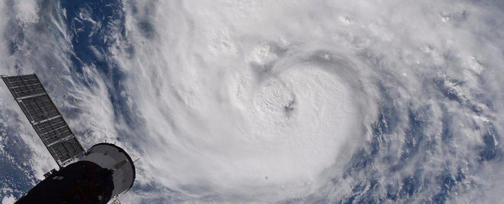 randy-bresnik-twitter-hurricane-harvey_1024